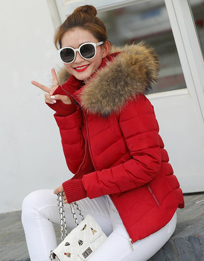 ab0d6d2e3d520 Winter Warm Jacket Fur Collar for Women – YeaCheez – Online Shopping ...