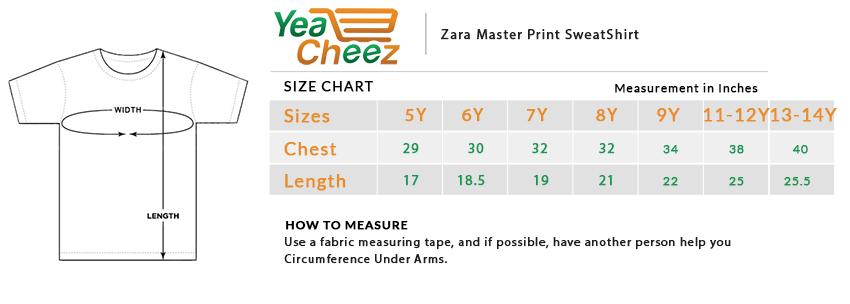 Zara Master Print SweatShirt